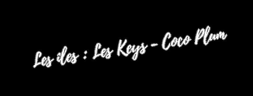 croisiere les keys Miami
