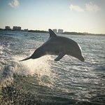 Curiosités Miami : Croisière Miami en Français